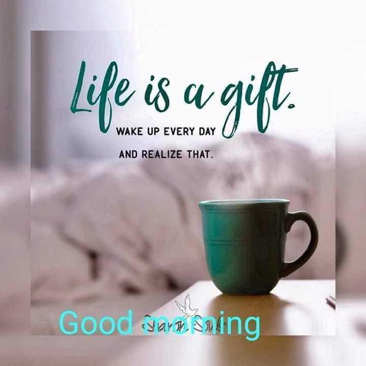 ফরোয়ার্ড ব্লক - life is a gift . WAKE UP EVERY DAY AND REALIZE THAT Good stars saing - ShareChat