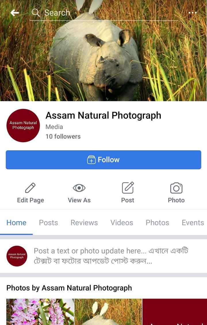 বনৰীয়া জীৱ-জন্তু - - Q Search Assam Natural Photograph Assam Natural Photograph Media 10 followers Follow Edit Page View As Post Photo Home Posts Reviews Videos Photos Events Assam Natural Photograph Post a text or photo update here . . . এখানে একটি টেক্সট বা ফটোর আপডেট পােস্ট করুন . . . Photos by Assam Natural Photograph - ShareChat