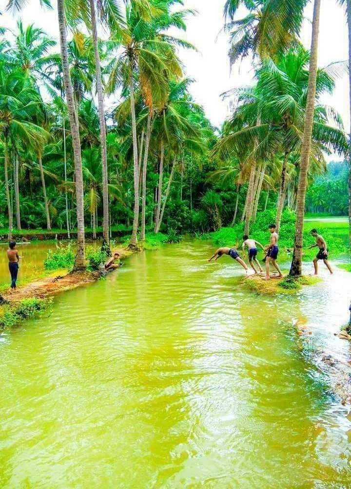 বাংলার নদী  🌊 - LEO - ShareChat