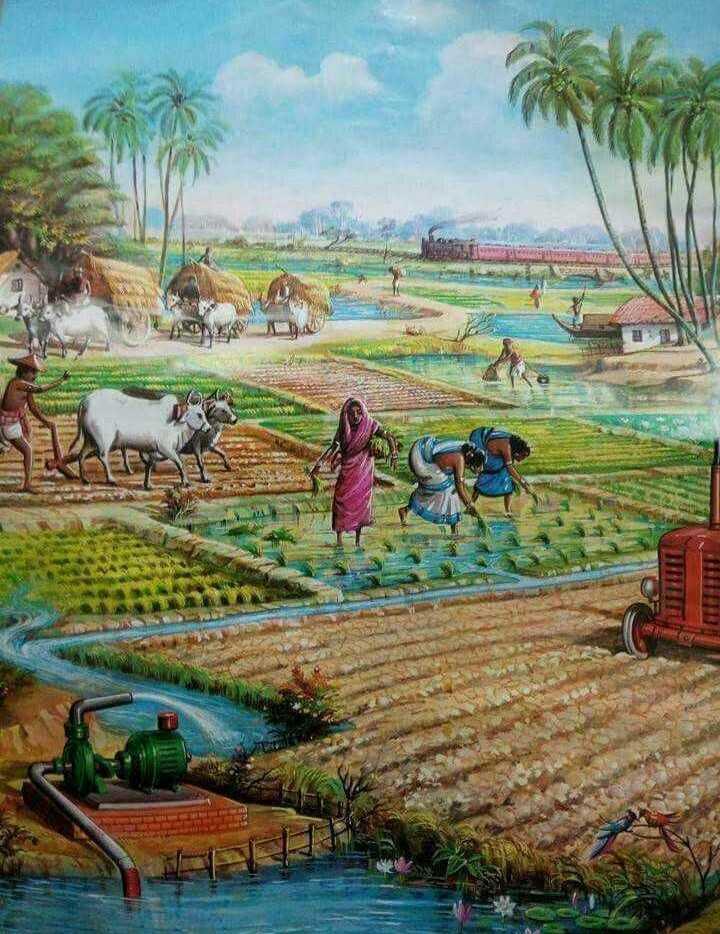 বাংলার নদী  🌊 - NU - ShareChat