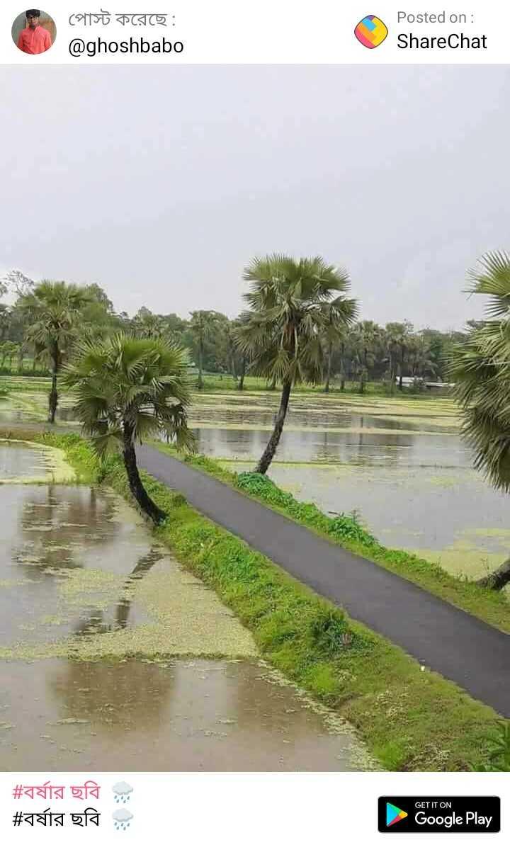 বাংলার নদী  🌊 - পােস্ট করেছে : @ ghoshbabo Posted on : ShareChat | # বর্ষার ছবি ই | # বর্ষার ছবি ? GET IT ON Google Play - ShareChat