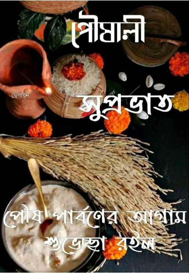 বাংলার মিষ্টি 🍪 - পিৗষালী দ্বৈপায়ন প্রভাত । পৌষ পার্বণের আগাম ক ভচ্ছা রইল - ShareChat