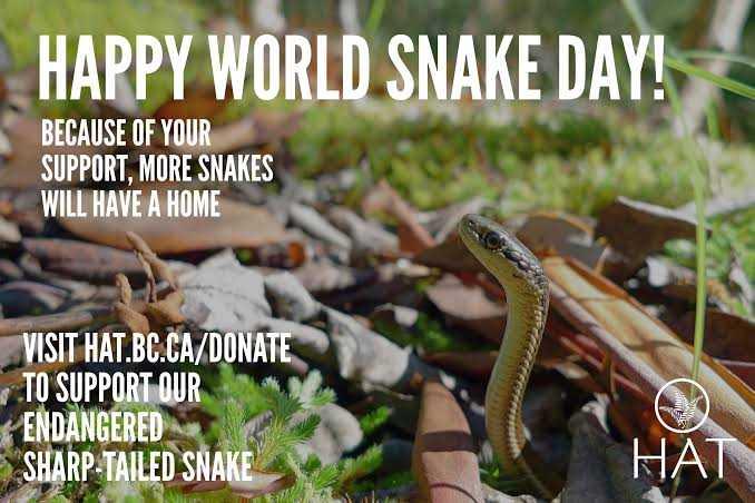 বিশ্ব সাপ দিবস 🐍 - HAPPY WORLD SNAKE DAY ! BECAUSE OF YOUR SUPPORT , MORE SNAKES WILL HAVE A HOME VISIT HAT . BC . CA / DONATE TO SUPPORT OUR - ENDANGERED SHARP - TAILED SNAKE HAT - ShareChat