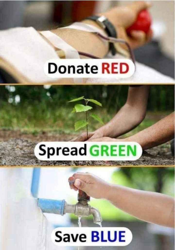 বৃক্ষ রোপন  🌳 - Donate RED Spread GREEN Save BLUE - ShareChat
