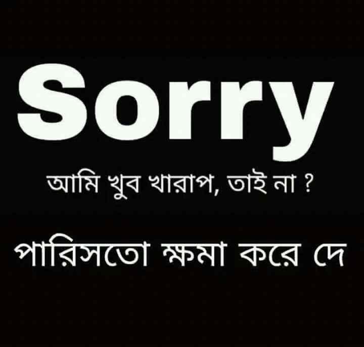 💔ভগ্নহৃদয় শায়েরি - Sorry আমি খুব খারাপ , তাই না ? পারিসতাে ক্ষমা করে দে - ShareChat