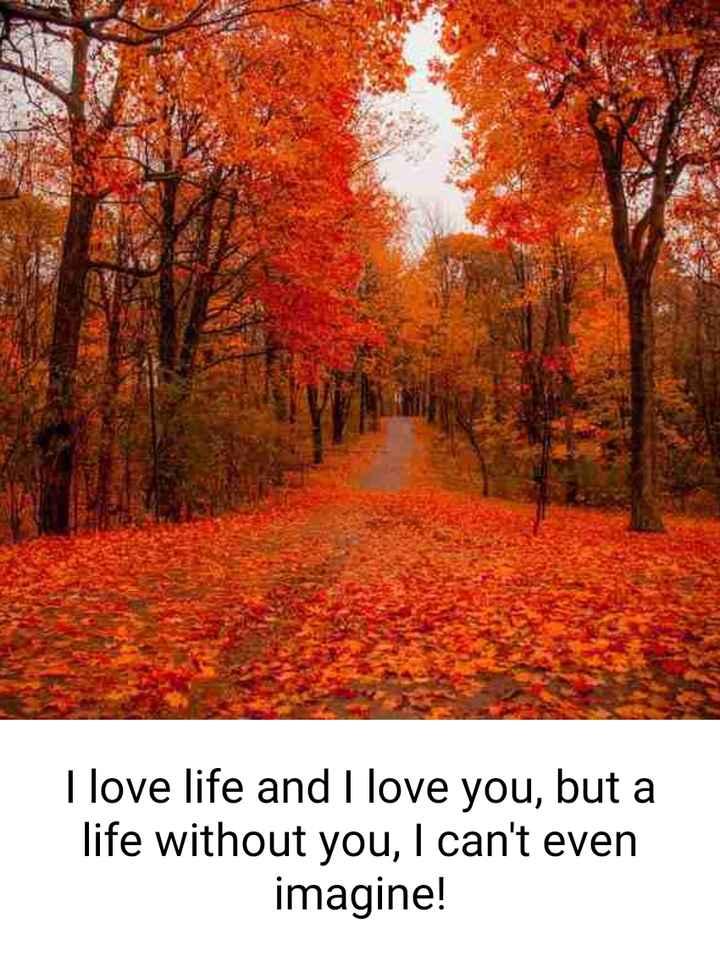 💔ভগ্নহৃদয় শায়েরি - I love life and I love you , but a life without you , I can ' t even imagine ! - ShareChat