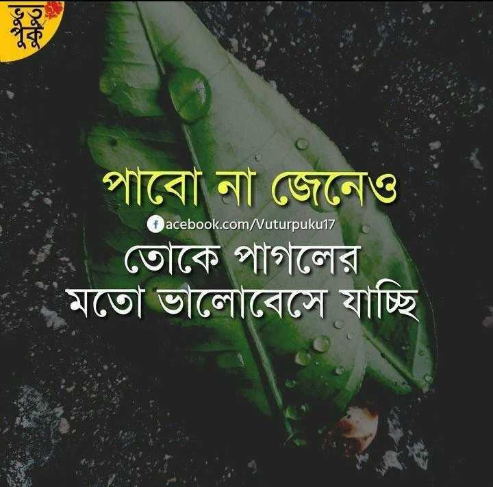 💔ভগ্নহৃদয় শায়েরি - facebook . com / uturpuku17 পাবাে না জেনেও ২ তােকে পাগলের মতাে ভালােবেসে যাচ্ছি । - ShareChat