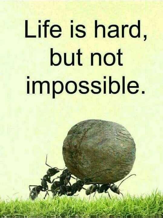 মজাদার তথ্য - Life is hard , but not impossible . - ShareChat