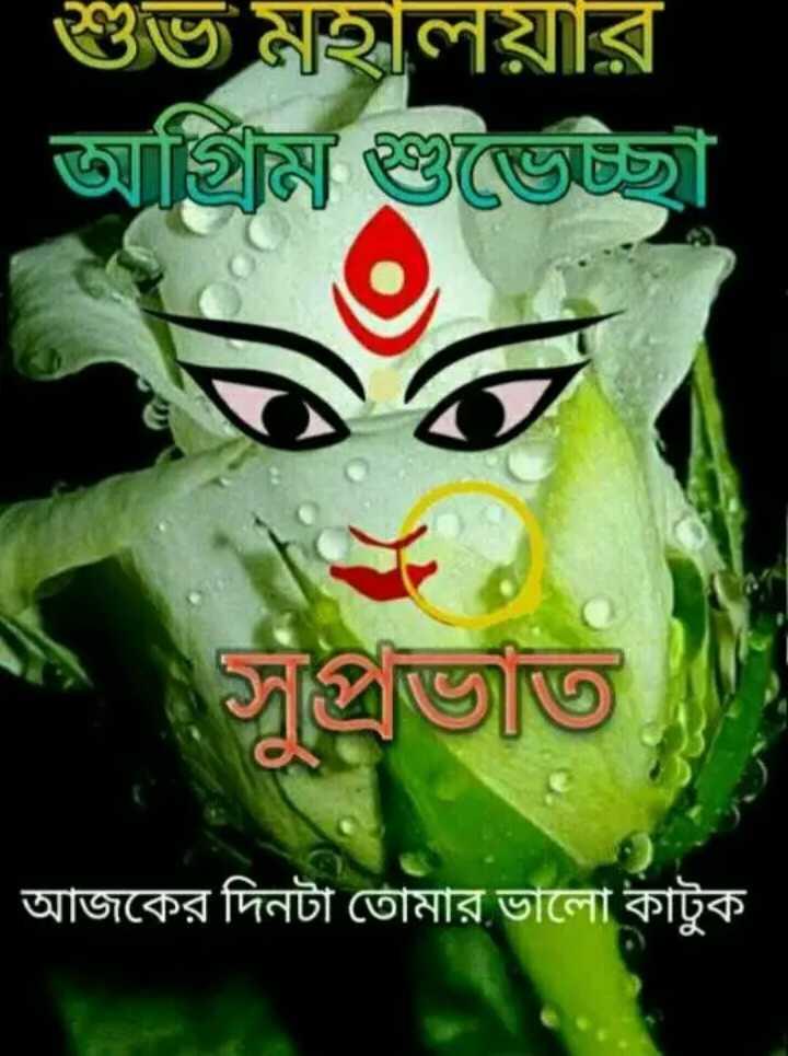 মহালয়ার অগ্রীম শুভেচ্ছা 👏🏻 - | শুভ মহালয়ার । জমি জৈচ্ছা সুপ্রভাত আজকের দিনটা তােমার ভালাে কাটুক - ShareChat