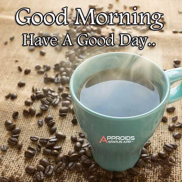 মায়ের হাতের রান্না - Good Morning Have A Good Day . . APPROIDS - ShareChat