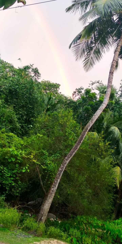 📱মোবাইল ফোটোগ্রাফি - 2011 3033 - ShareChat