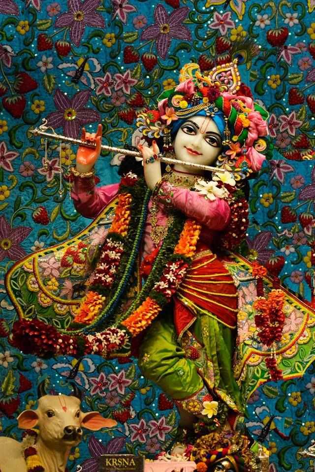 রাধা কৃষ্ণ - O KRSNA - ShareChat