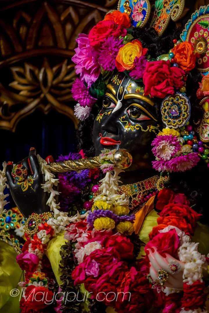 রাধা কৃষ্ণ - Mayapur . com - ShareChat