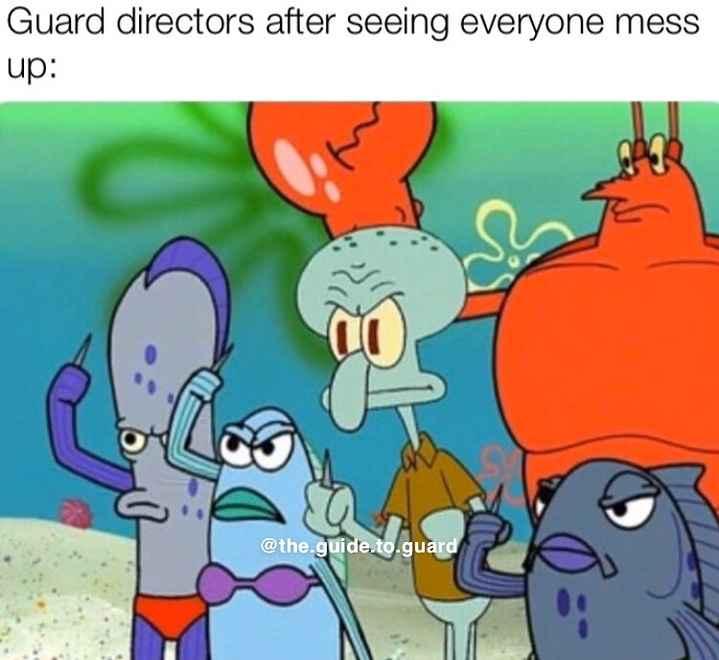 শীতের MEMES😂 - Guard directors after seeing everyone mess up : @ the . guide . to . guard - ShareChat