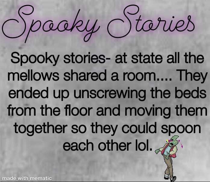 শীতের MEMES😂 - Opaaky Stories Spooky stories - at state all the mellows shared a room . . . . They ended up unscrewing the beds from the floor and moving them together so they could spoon each other lol . made with mematic - ShareChat