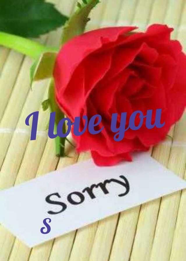 💝 শুধু তোমারই জন্য 💝 - I love you Sorry - ShareChat