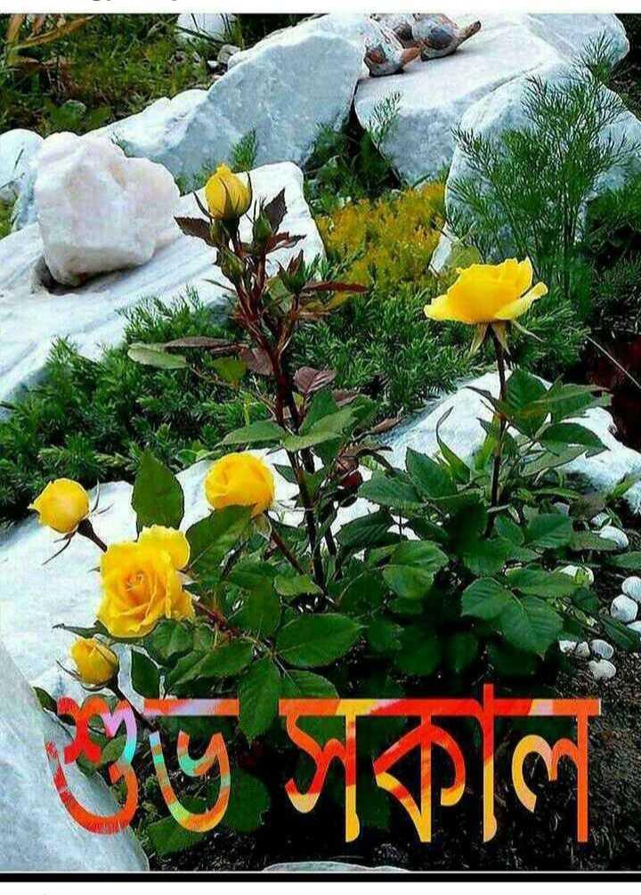 🙌শুভকামনা - ভ সকাল - ShareChat