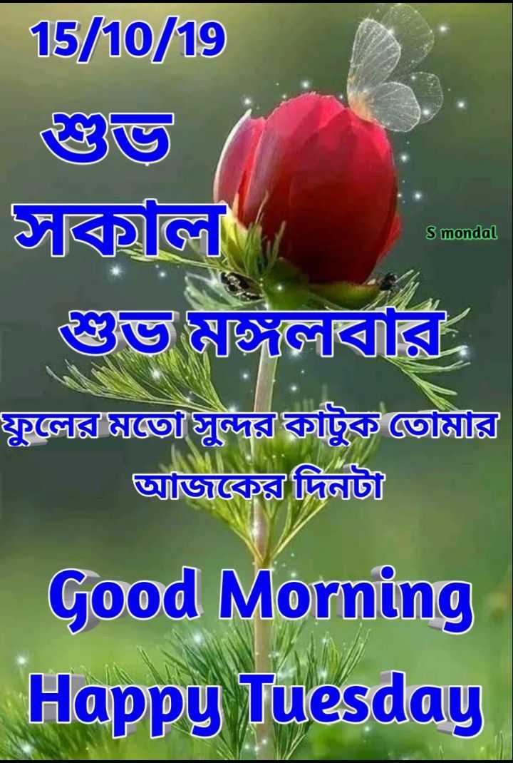 🙌শুভকামনা - | 15 / 0 / 19 ডেভি সবিয়তে S mondal শুভ মঙ্গলবার , | ফুলের মতো সুন্দর কাটুক তোমার আজকের দিনটা Good Morning Happy Tuesday - ShareChat