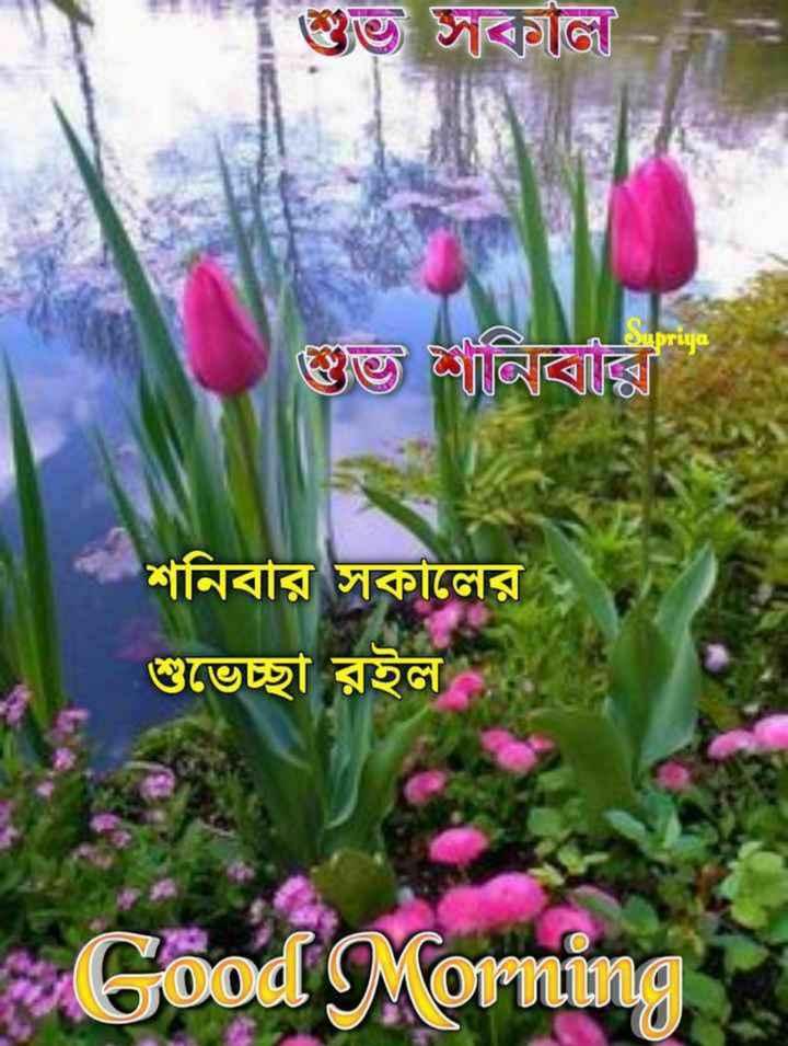 🙌শুভকামনা - শুভ সকাল । Supriya গুত শনিবারি । শনিবার সকালের শুভেচ্ছা রইল Good Morning - ShareChat