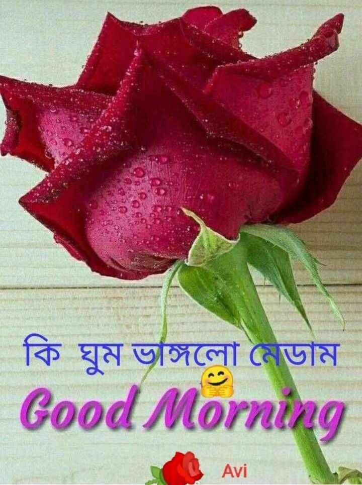 🙌শুভকামনা - | কি ঘুম ভাঙ্গলাে মেডাম Good Morning Avi - ShareChat