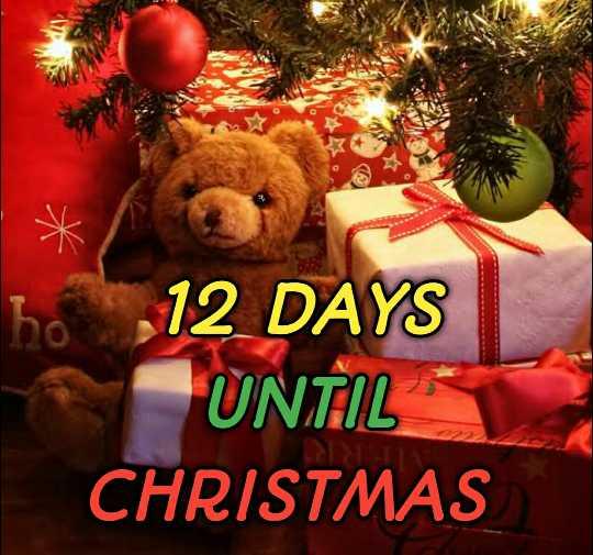 🙌শুভকামনা - 12 DAYS UNTIL CHRISTMAS - ShareChat