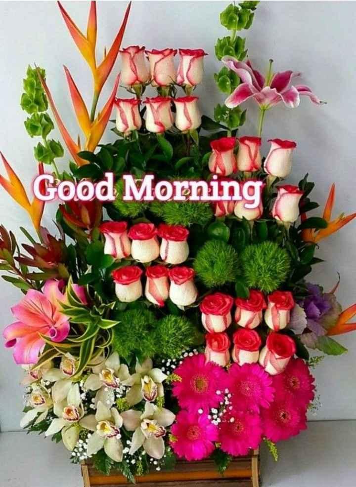 🙌শুভকামনা - Good Morning - ShareChat