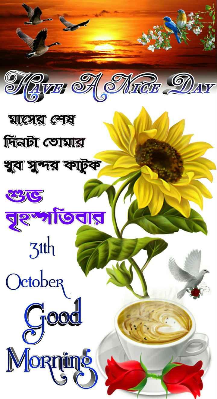 🙌শুভকামনা - FIE A Minor DAN | মাসের শেষ দিনটা তােমার খুব সুন্দর কাটুক বৃহস্পতিবার 31th October Good Morning - ShareChat