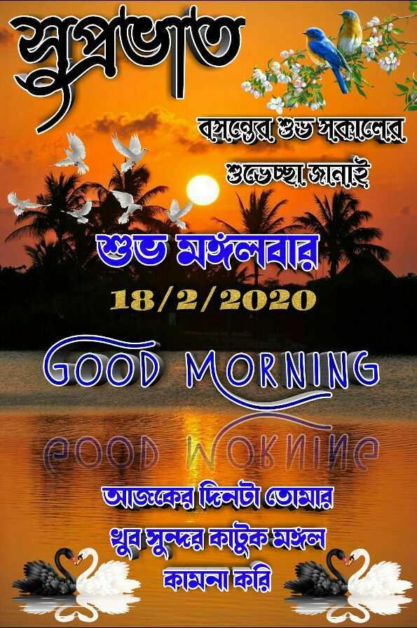 🙌শুভকামনা - বাঙৱস্থানের গুচ্ছুঞ্জে ভবের 18 / 2 / 2020 GOOD MORNING = ( a ) ) No na আজকেরটিওআর খুব কাটুকলি কিকিরি - ShareChat