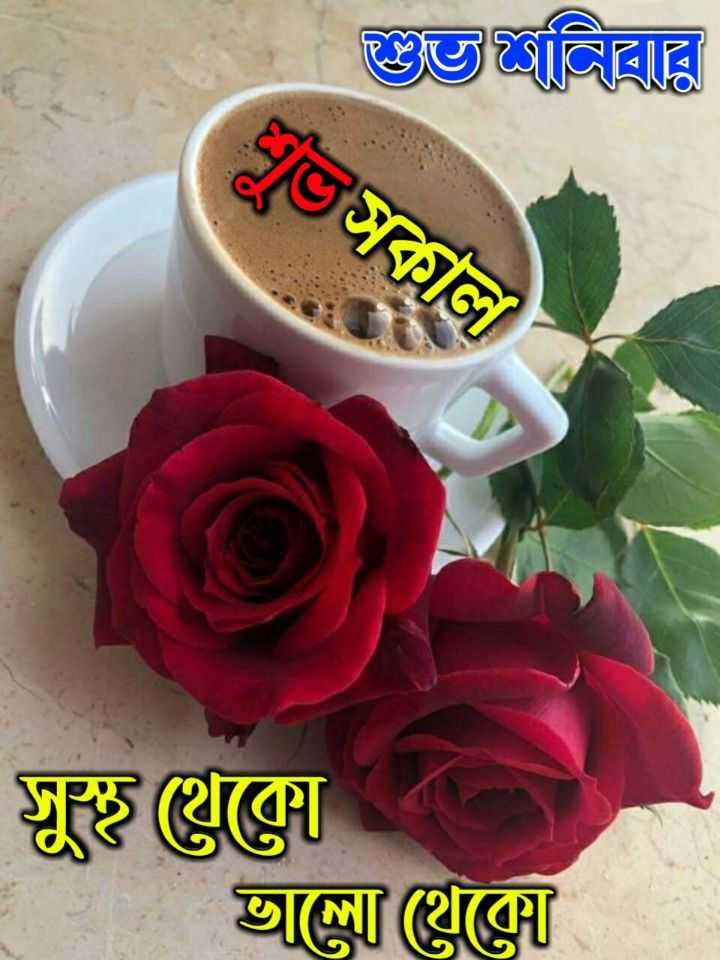 🙌শুভকামনা - গুলিবার শুভসকাল সুস্থ কোন   আল্লা গ্লক্সে - ShareChat