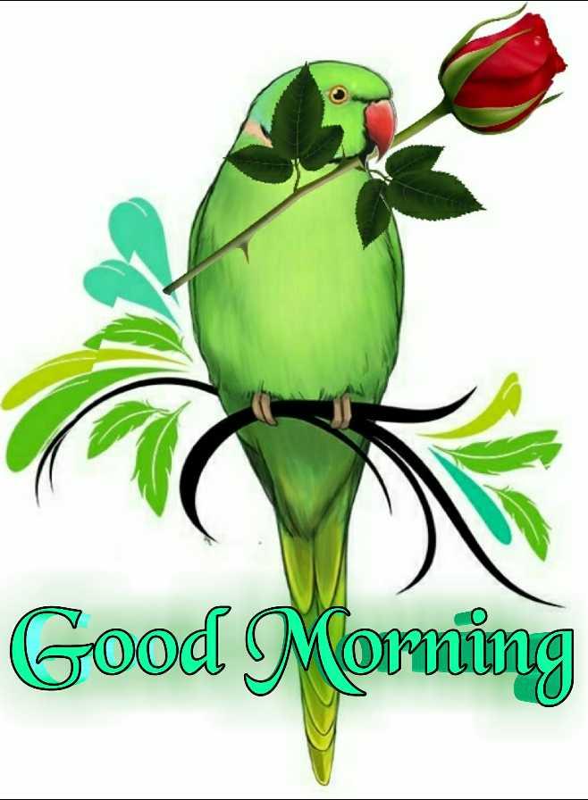 🙌শুভকামনা - Good Morning ( 02 - ShareChat