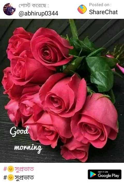 🙌শুভকামনা - পােস্ট করেছে : @ abhirup0344 Posted on : ShareChat Good morning # সুপ্রভাত # সুপ্রভাত GET IT ON Google Play - ShareChat