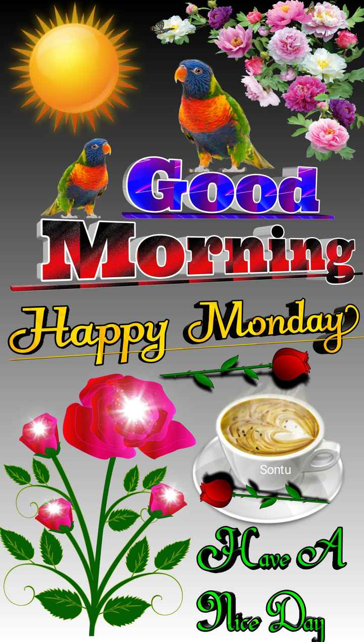 🙌শুভকামনা - Good Morning Happy Monday Sontu VMwa VIDA - ShareChat