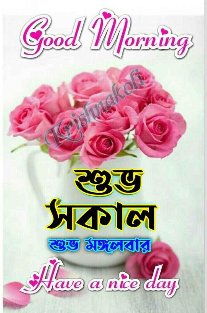 🙌শুভকামনা - Good Morning O Ina shinako ২৫জ সকাল শুভ মলবার Have a nte da - ShareChat