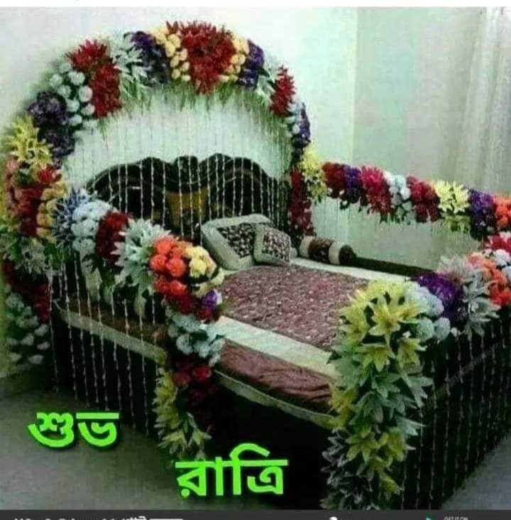 🙌শুভকামনা - রাত্রি - ShareChat