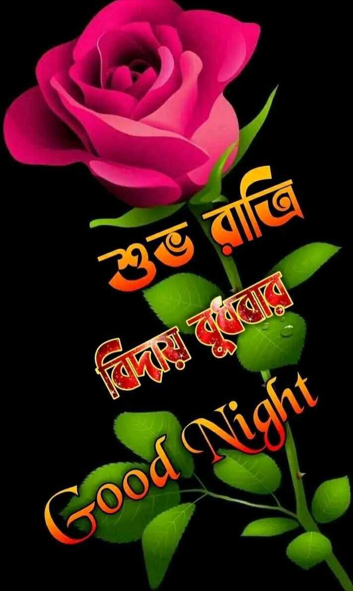 🙌শুভকামনা - শুভ রাত্রি বিদায় লবরে । Good Night - ShareChat