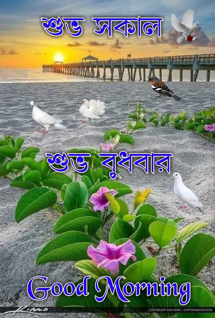 🙌শুভকামনা - Bভ আবাতিল । ভী বরি Good Morning COTT KIMENE CAPTRICEMOCUM - ShareChat