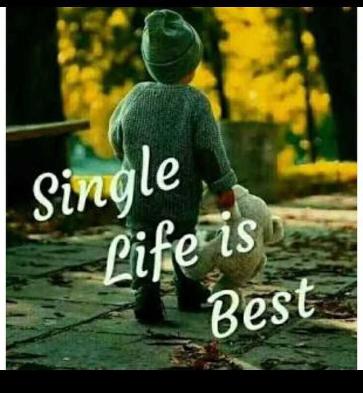 🙌শুভকামনা - Single Life is Best - ShareChat