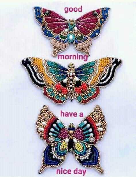 🙌শুভকামনা - good morning have a nice day - ShareChat