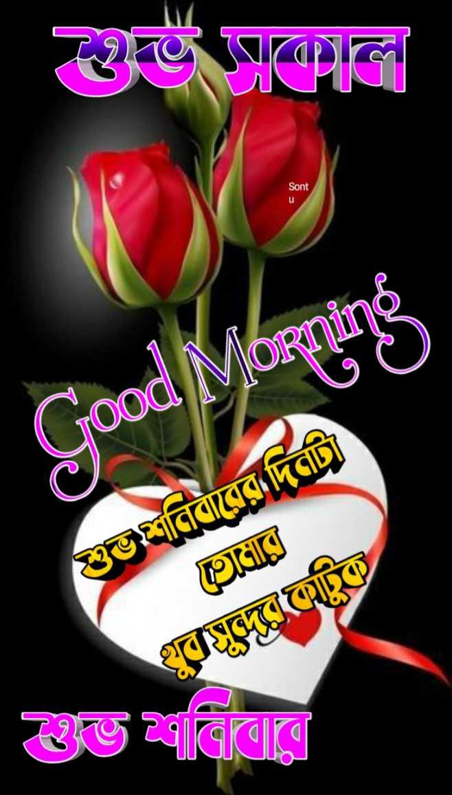 🙌শুভকামনা - Sont Good Morning ভশ্রীনিবারের দিত্রট বে । শুভ বিবারে - ShareChat