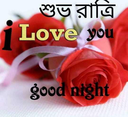 🙌শুভকামনা - শুভ রাত্রি Love you good night - ShareChat