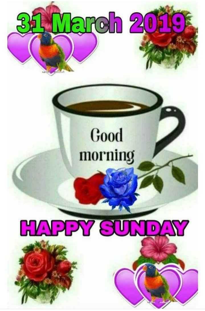 🙌শুভকামনা - 31 March 2019 Good morning HAPPY SUNDAY - ShareChat