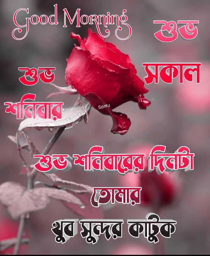 🙌শুভকামনা - Good Morning 20 সকাল কিবােরে ভাবিলোত্রের দিত্রা । Sontu 9ার । _ T খুব সুন্দর কাটুক । - ShareChat