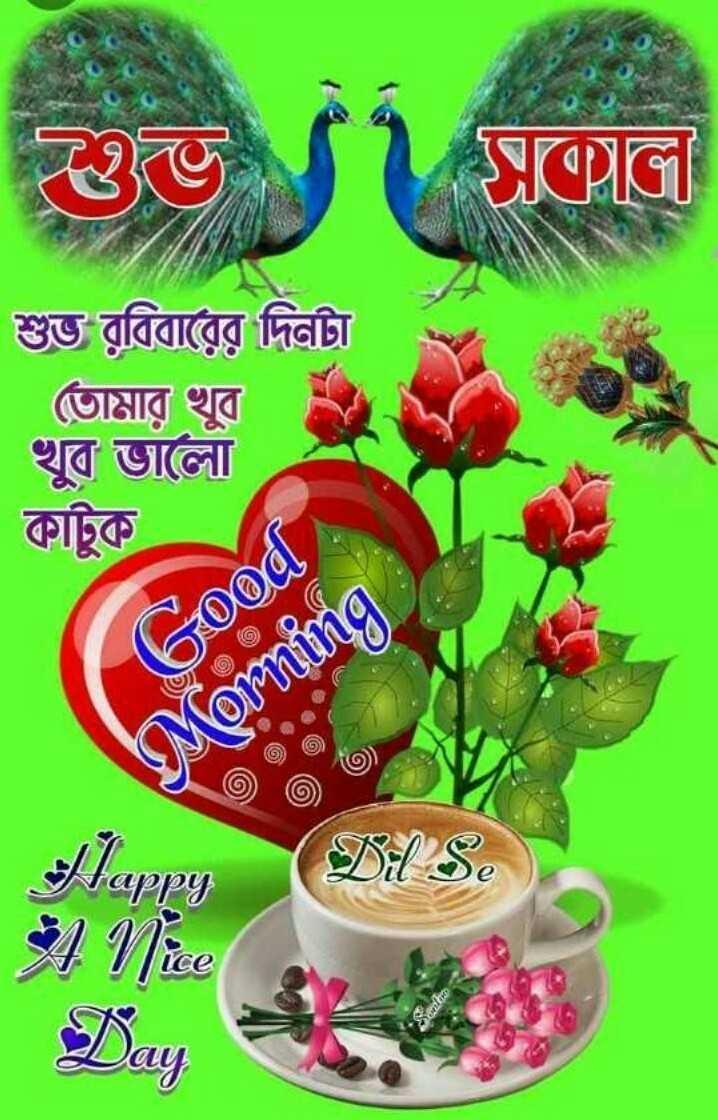 🙌শুভকামনা - ওভ । সূলে শুভ রবিবারের দিনটা | তােমার খুব । খুব ভালাে । | কাটুক Good Acoming Dil S . fappy - ShareChat