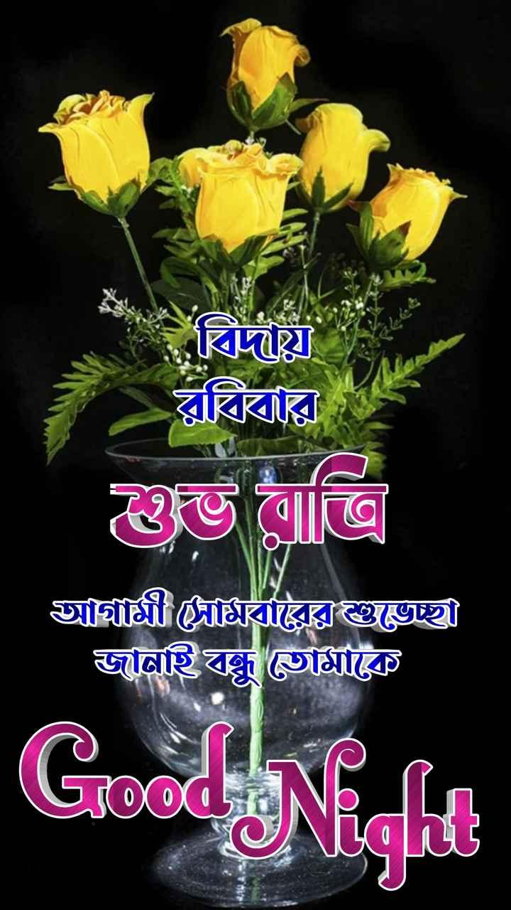 🙌শুভকামনা - বিদষ্টা বিহার ৬ ত্রি জামী দামরক্সাগুচ্ছ জানাইঘন্ধু তােমাকে Good Night - ShareChat