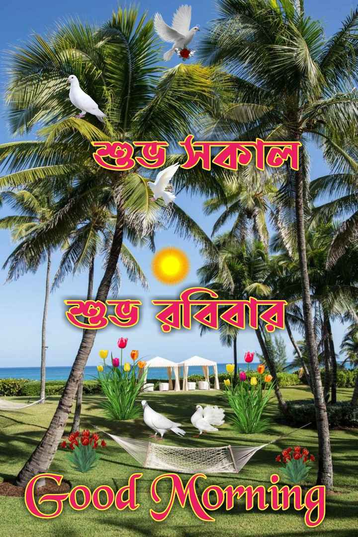 🙌শুভকামনা - UUSTANG WWWWW 23 ECE Cood Morning - ShareChat