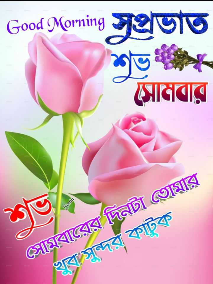 🙌শুভকামনা - * * Good Morning Jeluto সােমবার । সােমবারের দিনটা তােমার খুব সুন্দর কাটক - ShareChat