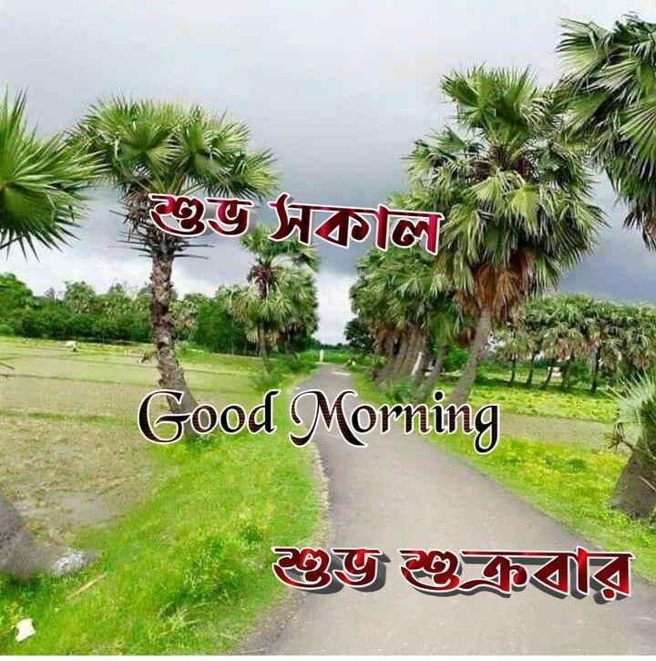 🙌শুভকামনা - = শুভ সকাল । Good Morning শুভ শুক্রবার - ShareChat