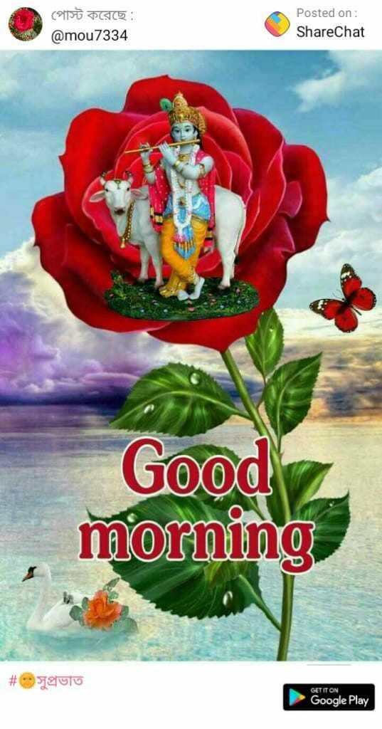 🙌শুভকামনা - পােস্ট করেছে : @ mou7334 Posted on : ShareChat Good morning # pulo GET IT ON Google Play - ShareChat