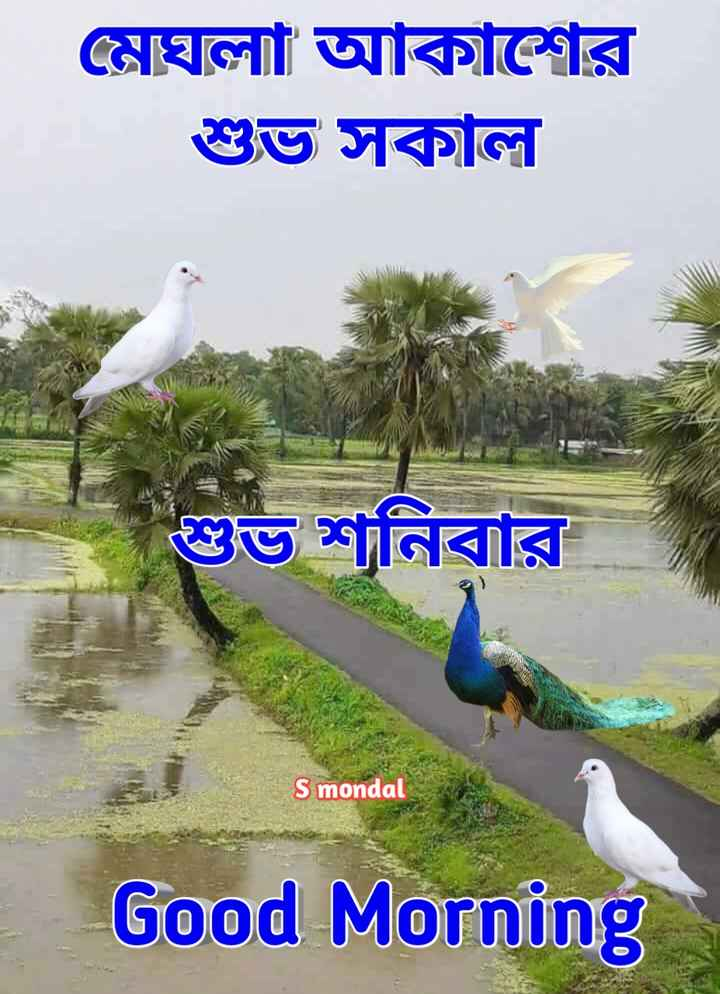 🙌শুভকামনা - মেঘলা আকাশের শুভ সকাল শুভ শনিবার S mondal Good Morning - ShareChat
