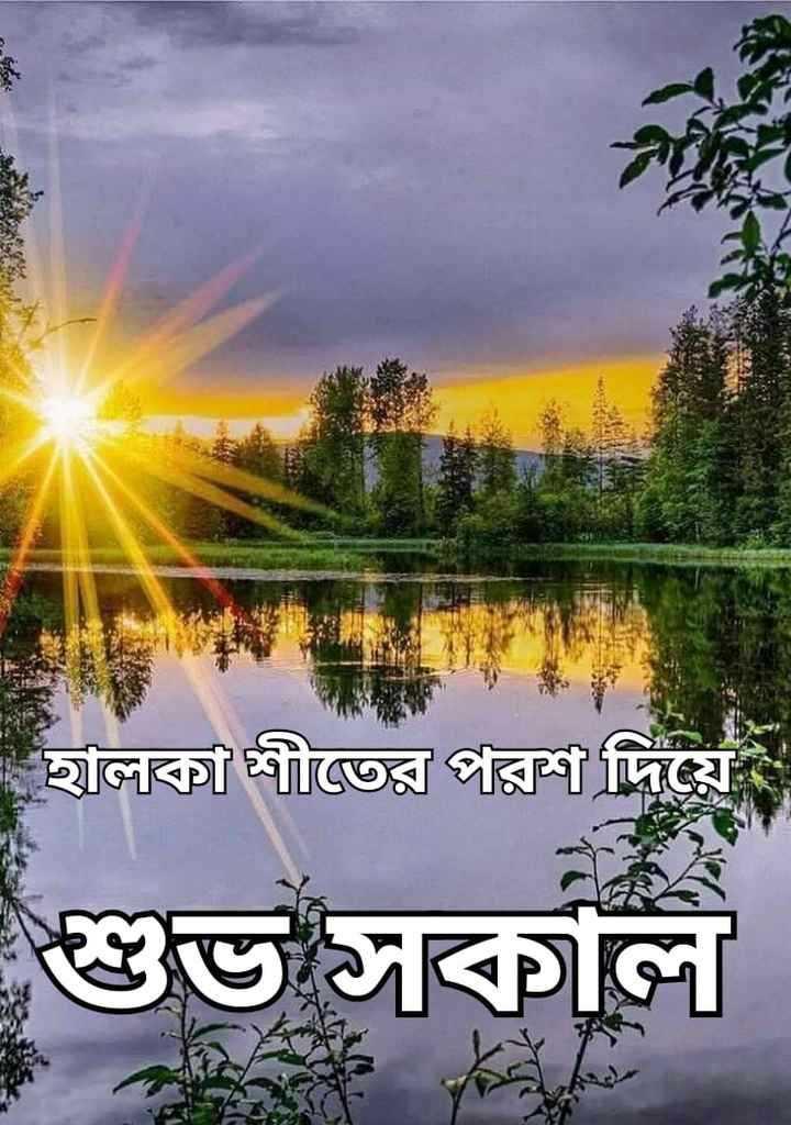 🙌শুভকামনা - হালকা শীতের পরশ দিয়ে শুভ সকাল - ShareChat